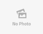 মেহেরপুরের গাংনীতে 'বন্দুকযুদ্ধে' অজ্ঞাত দুজন নিহত